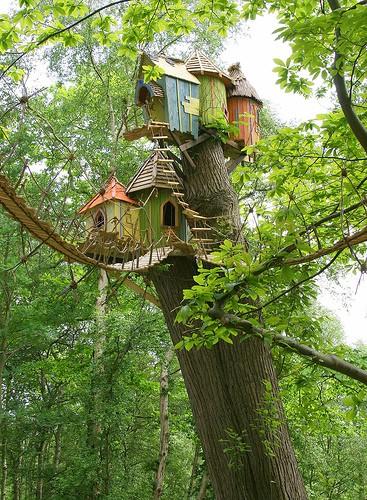 tiny house 9