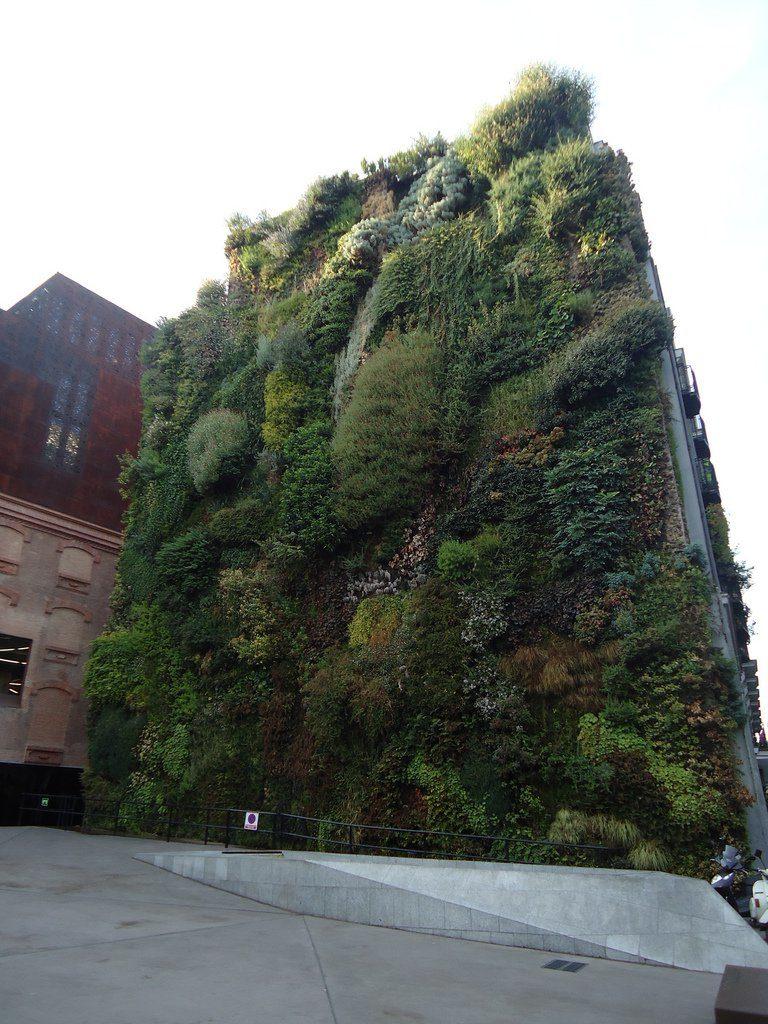 vertical-garden-12