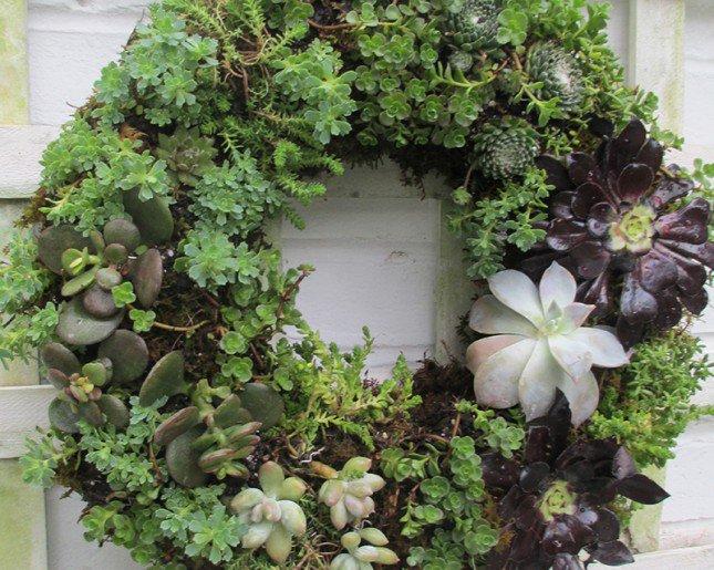 vertical-garden-3