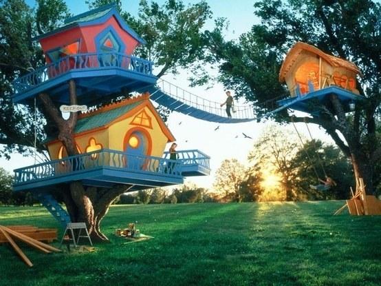 amazing-backyards-5