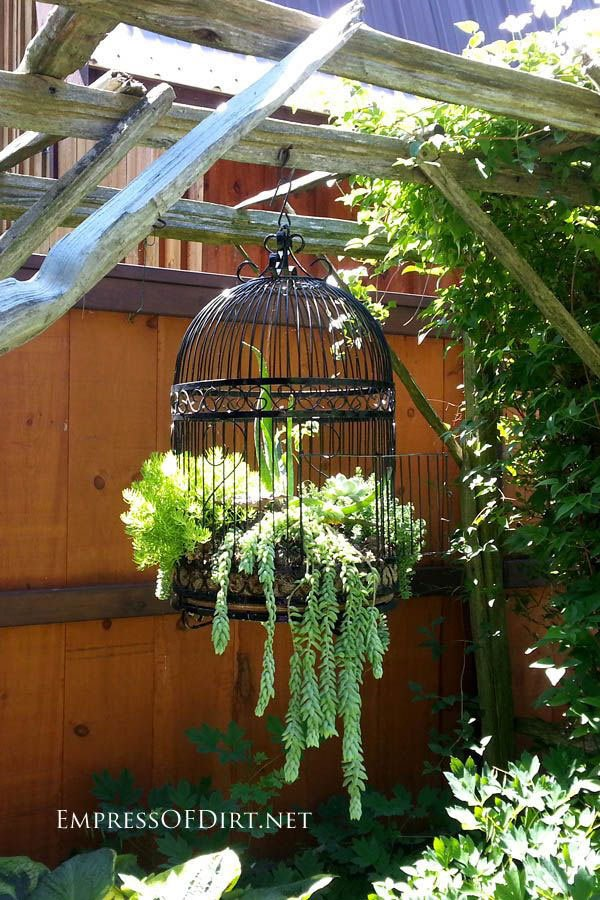 decorating-your-garden1