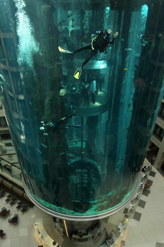 amazing-elevator-design7-1