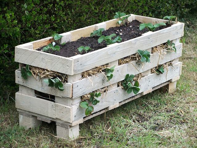 recycling-decorating-pallets7